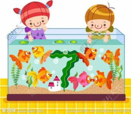 鱼缸养鱼图片