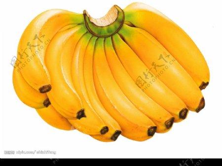 好看的香蕉哦图片