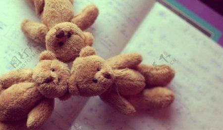 小熊和书本图片