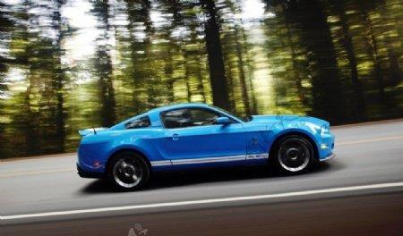 福特野马跑轿车图片