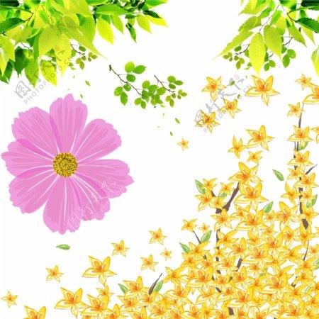 迎春花树枝花朵