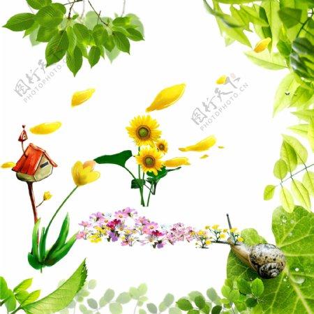 树叶素材向日葵