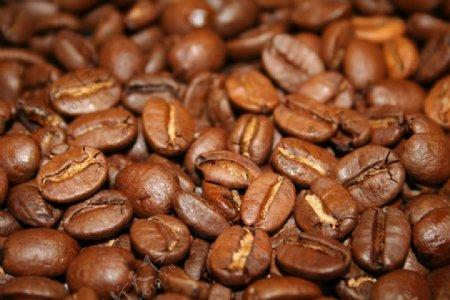 咖啡豆高清网站背景