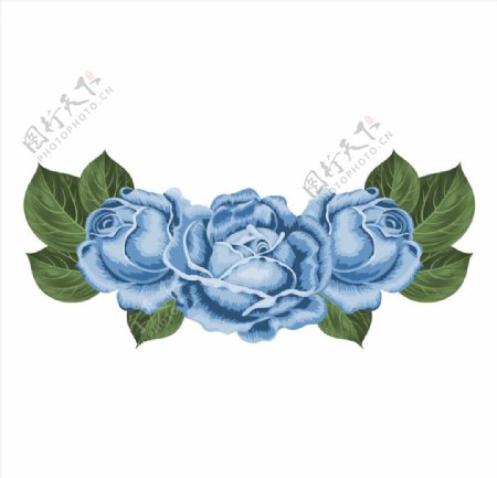 蓝玫瑰矢量素材