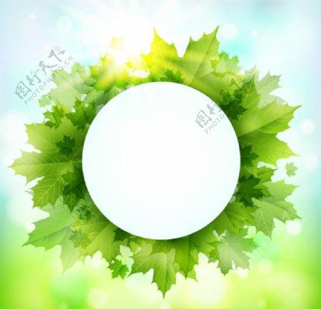 绿色枫叶装饰圆形标签背景矢量图