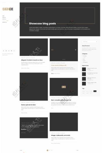 精美的企业科技商务网站之博客列表