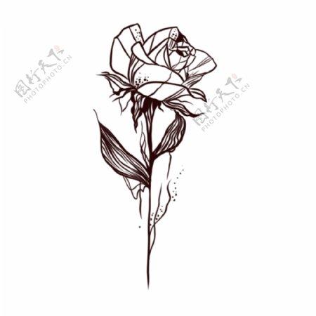 欧美纹身手稿手绘玫瑰花纹身