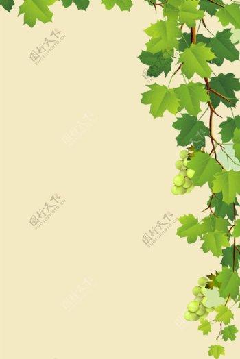 简约绿叶白葡萄H5背景素材