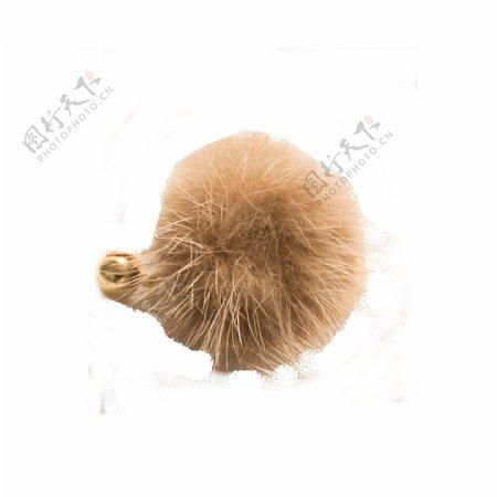 单个金色耳钉圆圈毛茸茸