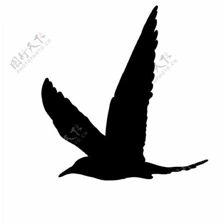 鸟类剪影可商用素材