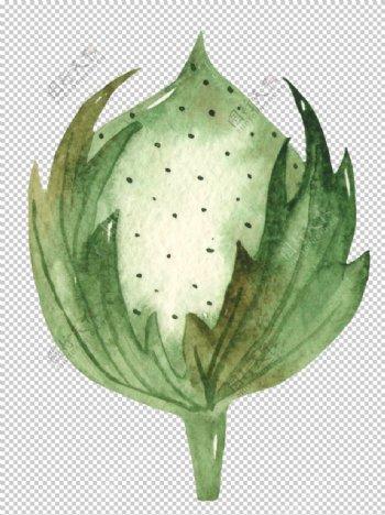 木棉花花朵绘画图案