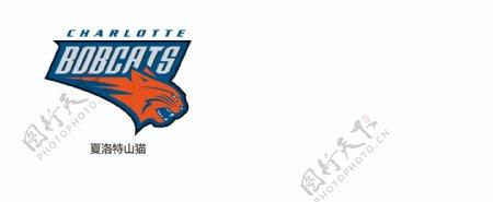 NBA夏洛特山猫