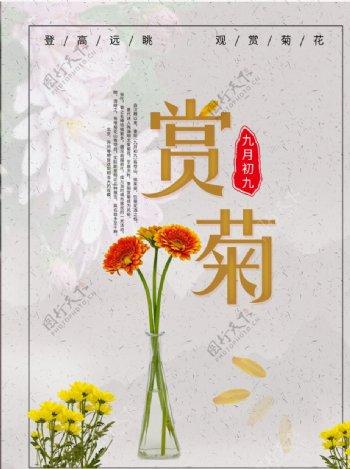 赏菊菊花海报