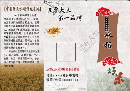 水稻宣传三折页双面