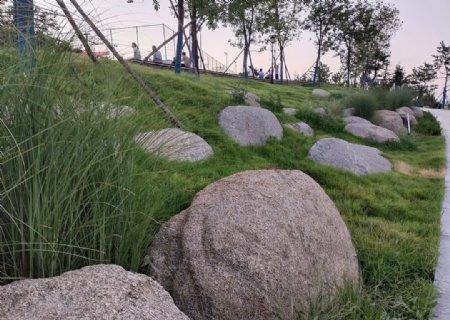 公园里的大石头