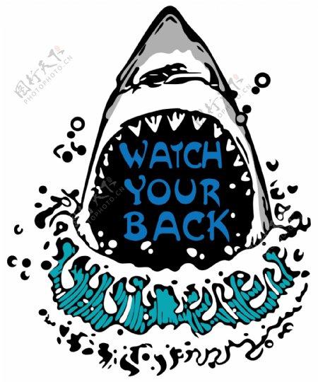 卡通漫画鲨鱼鲨鱼嘴BACK