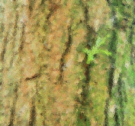 纹理草木背景