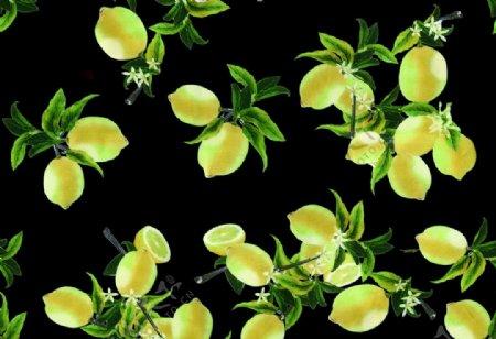 柠檬数型裙子墙纸图案