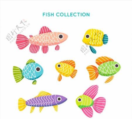 彩色花纹鱼类图片