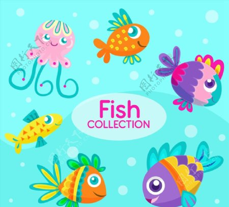 卡通表情海洋动物图片