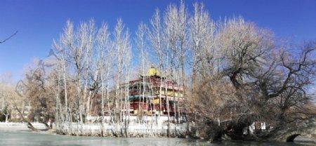 湖泊树林亭子古建筑风景图片