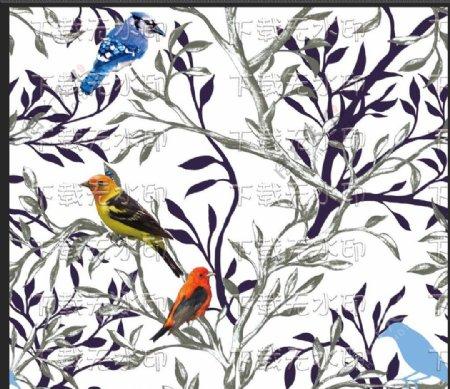 树上的鸟儿图片