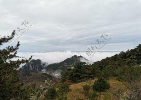安徽黄山迎客松奇石云雾图片