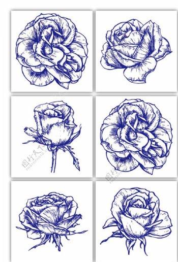 手绘花卉玫瑰图片
