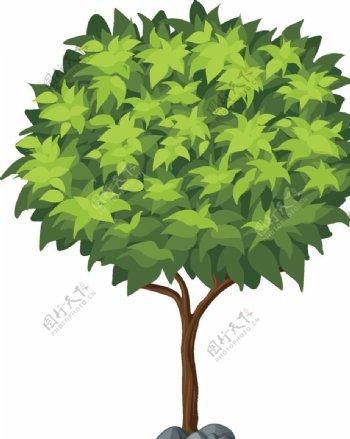 卡通大树图片