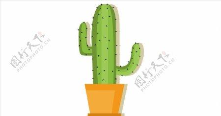 卡通植物图片
