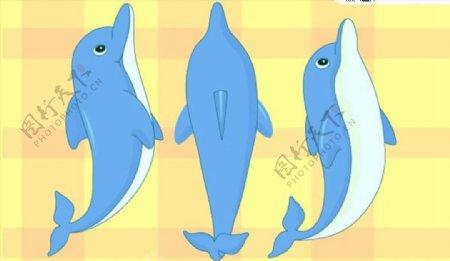 跳跃的小海豚图片