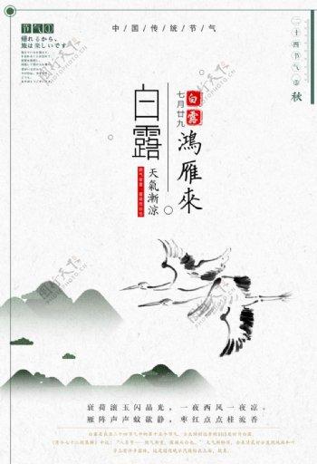 白露节气海报图片