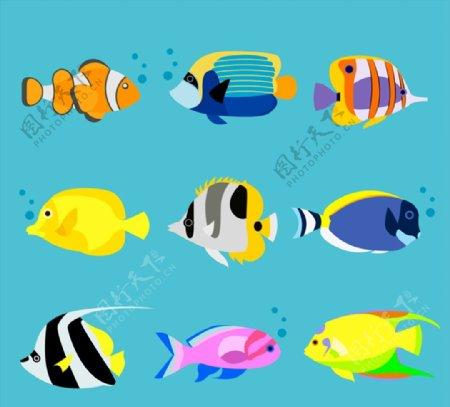 卡通海洋鱼类图片