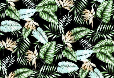 热带男装绿叶图片