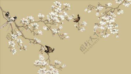 花鸟画玉兰小鸟背景墙图片