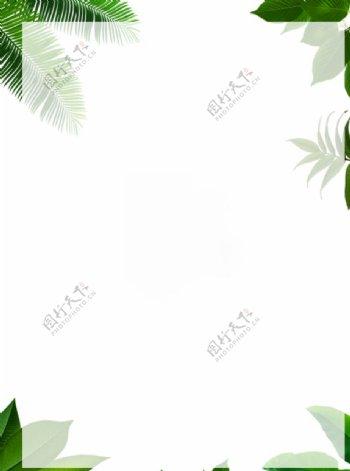 绿叶植被背景图片