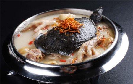 焖甲鱼高清图图片