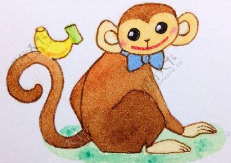 可爱猴子插画图片