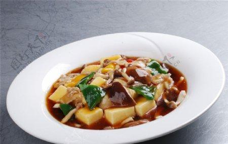 杂菌自制豆腐图片