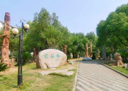 武汉地质大学石化林图片