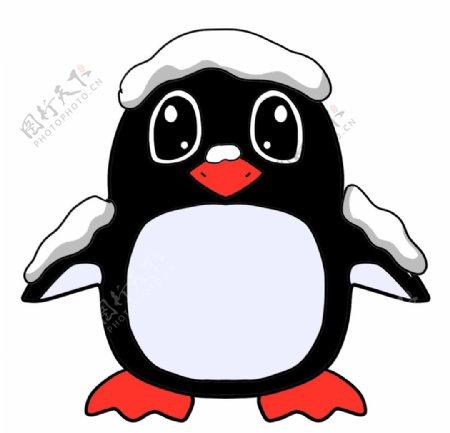 企鹅手绘插画图片