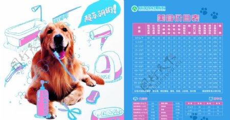 宠物美容价目表图片