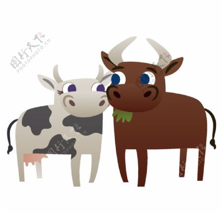 奶牛公牛矢量图片