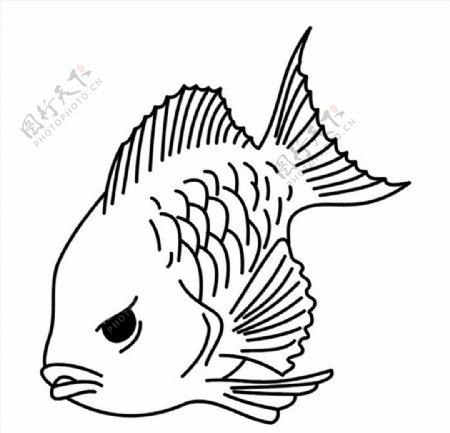 鱼矢量图图片