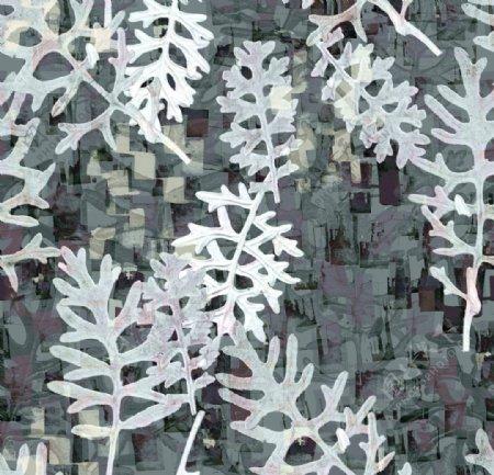 抽象树叶图片