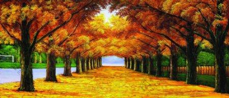 黄金大道枫树林图片