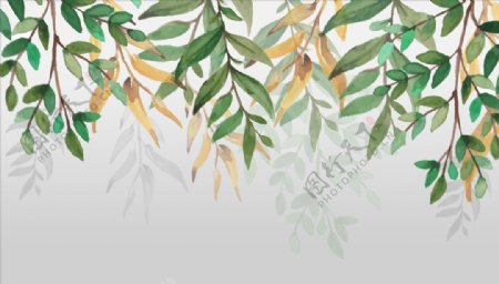 树叶绿叶背景墙图片