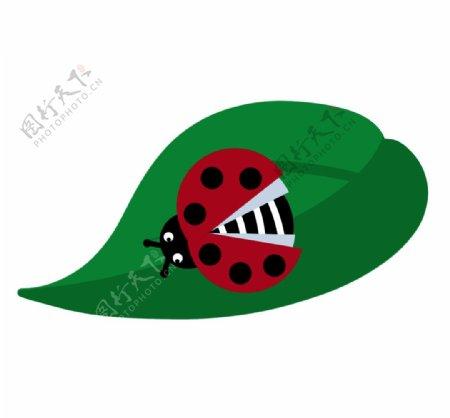 卡通瓢虫图片