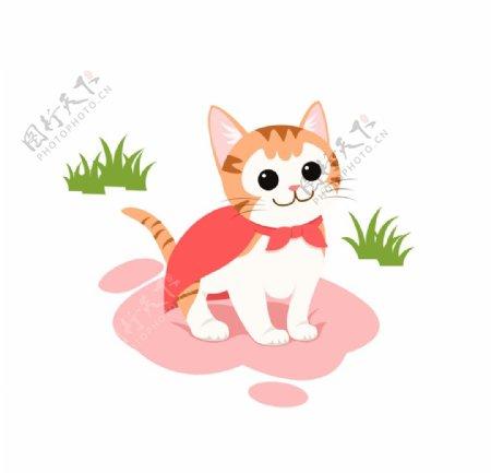 披着红色披风的可爱小猫图片