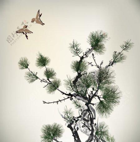 松树矢量图片